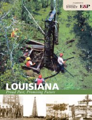 LOUISIANA - Oil and Gas Investor