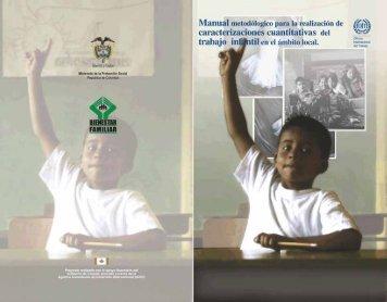 Manual metodológico para la realización de caracterizaciones ...