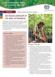 Un travail productif et sûr dans la foresterie - International Labour ...