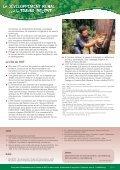 Un travail productif et sûr dans la foresterie - International Labour ... - Page 4
