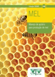 Manejo de apiário para produção de mel - OIT/Cinterfor