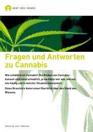 Fragen und Antworten zu Cannabis - okaj