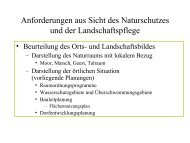 Biogasanlagen Anforderungen aus Sicht des Naturschutzes und der ...