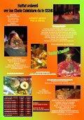 REVEILLON 2011 (spectacle et repas) - Page 2