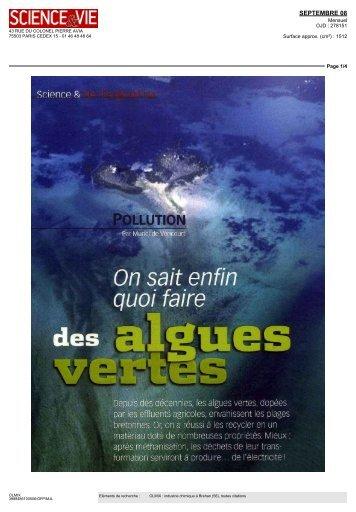 Pollution-On sait enfin quoi faire-des algues vertes - Olmix