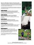 Wilderness Skills - Olympia Mountaineers - Page 2