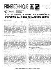 Lutte contre le virus de la mosaïque du pépino dans les tomates de ...