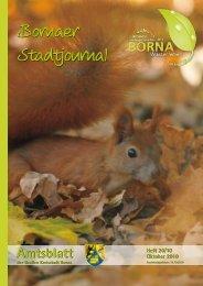 Amtsblatt der Großen Kreisstadt Borna 20/10 - Druckhaus Borna