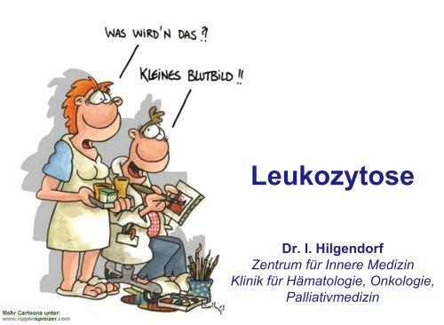 Ausmaß der Leukozytose - Hämatologie und Onkologie Rostock