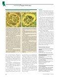 Prophylaxe und Therapie der Nephropathie nach Strahlentherapie - Page 4
