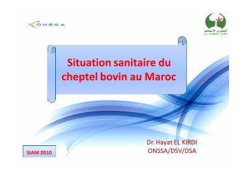 Situation sanitaire du cheptel bovin au Maroc - ONSSA