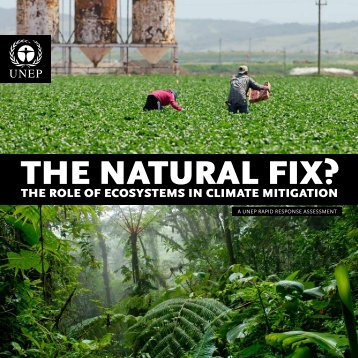 UNEP - The Natrual Fix - The Role of Ecosystems in Climate Mitigation
