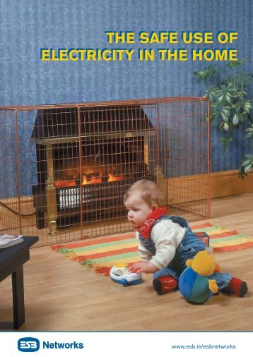 The Safe Use of Electricity in the Home - Esb