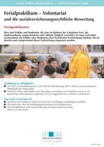 Information Ferialpraktikum - Volontariat 2008