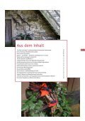 Museumsinfoblatt Nr. 02/03/2013.pdf - Oberösterreichischer ... - Page 3