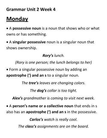 Noun Review - Irregular Plural, Possessive | Noun Worksheets ...