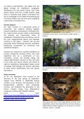 Discovering Amphibian Diversity and Building Conservation ... - Page 2