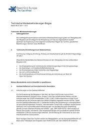 Technische Mindestanforderungen Biogas - Open Grid Europe GmbH