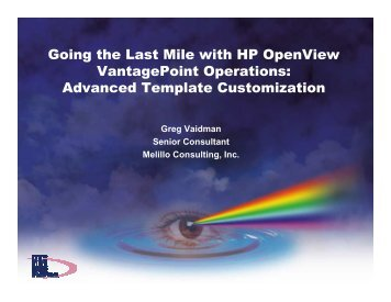 Advanced Template Customization - OpenMPE