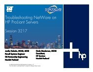 Troubleshooting NetWare on H P ProLiant Servers - OpenMPE