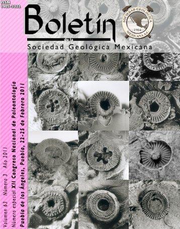 Portada forros, índice/Front cover - Boletín de la Sociedad ...