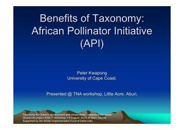 Benefits of Taxonomy: African Pollinator Initiative (API) - BioNET