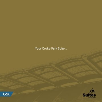 Your Croke Park Suite...