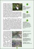 161VXLQzw - Page 7