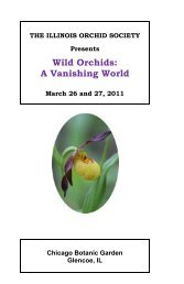 Wild Orchids - The Illinois Orchid Society
