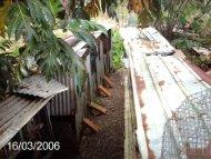 La loi du 6 janvier 1999 - Caribvet