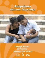 Manual Operativo - Agenda desde lo Local