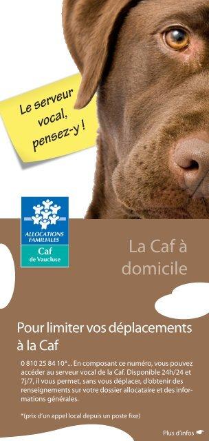 les services du serveur vocal - Caf.fr