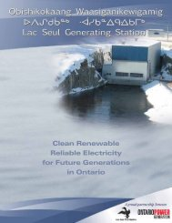 Clean Renewable Reliable Electricity for Future Generations in ...