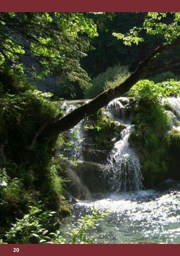 Der Wasserfall - Evangelischer Kirchenbezirk Tübingen