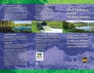 Private or Commercial Stormwater Pond Maintenance