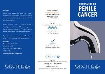 Penile Cancer 6pp DL Leaflet Mar 08:Orchid Penile Leaflet Jul 07