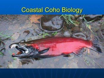 Coastal Coho Biology