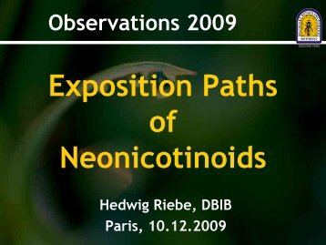 Exposition paths of neonicotinoids - Bits and Bees