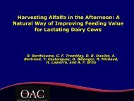 Harvesting Alfalfa in the PM: Value for Dairy Cows