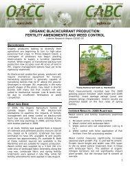 Organic Blackcurrant Production - Centre d'agriculture biologique du ...