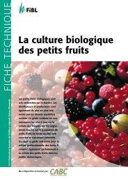 La culture biologique des petits fruits - Centre d'agriculture ...