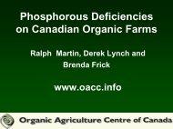 Phosphorous Deficiencies on Canadian Organic Farms