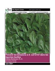 Prévenir les éclosions à E. coli O157 dans les légumes feuilles