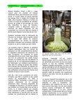 Prévenir les éclosions à E. coli O157 dans les légumes feuilles - Page 4