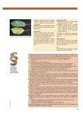 Merkblatt Pflege Obst/franz. - Centre d'agriculture biologique du ... - Page 7