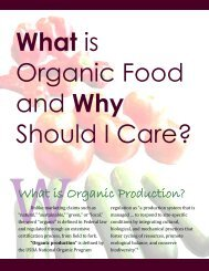 What is Organic Food and Why Should I Care?