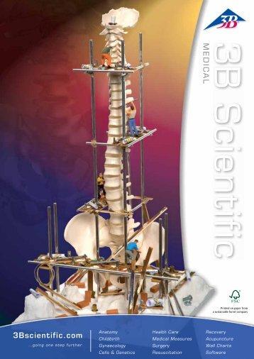 3B Scientific - Medical Catalog
