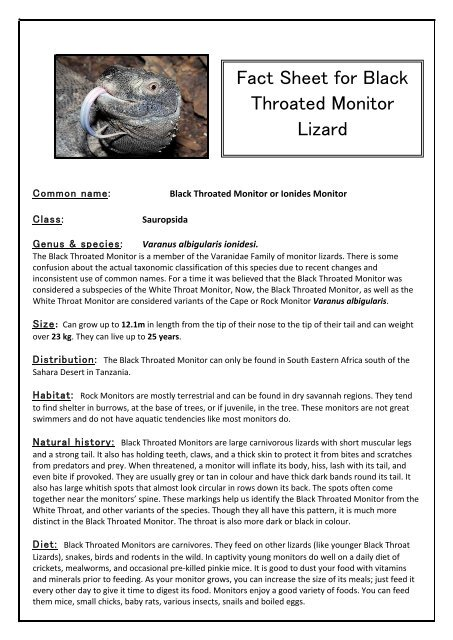 Fact Sheet For Black Throated Monitor Lizard