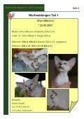 Magazin der Interessengemeinschaft Oriental Cats - Seite 4