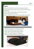 Magazin der Interessengemeinschaft Oriental Cats - Seite 7